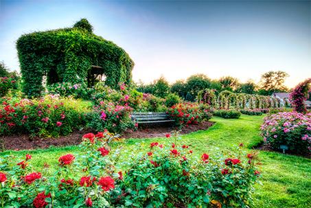 Ihr Garten Spezialist Für München Süd Ost Andreas Dick Garten